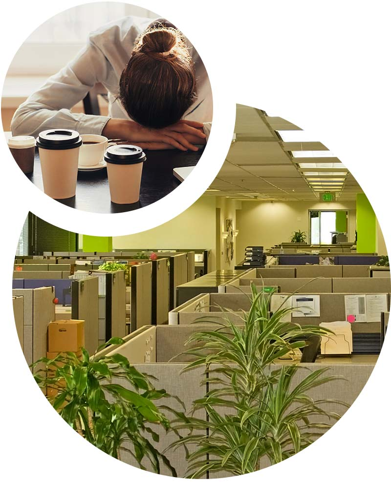 Tired of your office?